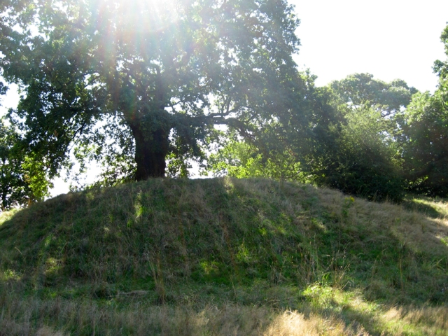 A possible Romano-British temple site in the Royal Park at Greenwich. Treading in the footsteps of Tony, Mick, Phil, et al.