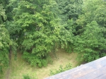 Kew has an amazing treetop walkway. This is looking down over the railing.