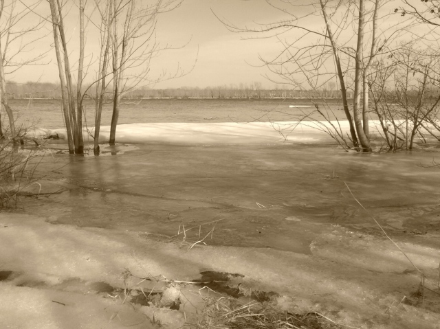 River landscape, with ice.